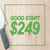 Good Start Pricing Icon $249