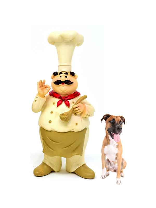 mbarq_chef_dog_600x800