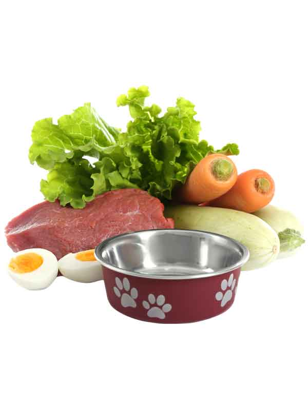 mbarq_fresh_food_dog_bowl_600x800